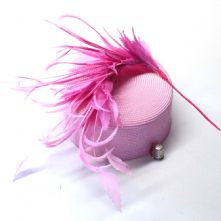 Large Bubblegum Pink Goose Nagoire, Biot and Coque Feather Hat Mount